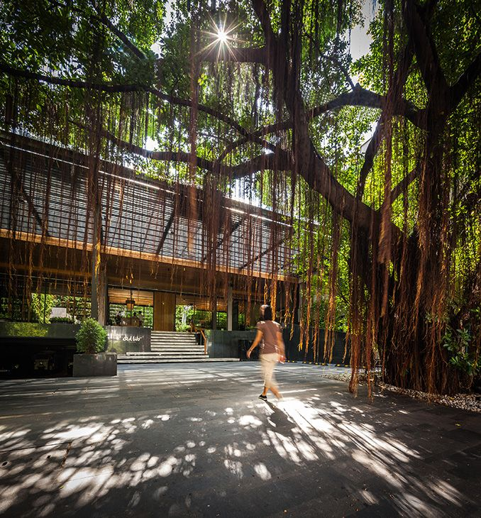 Atlanta S Premiere Landscape Architect: Landscape Architecture