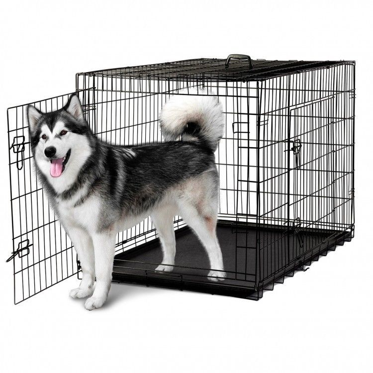 Xxl Dog Crate Folding Pet Kennel Collapsible Metal Cat Rabbit Cage Divider 48 Xxldogcrate Dog Cages Wire Dog Crates Xxxl Dog Crate
