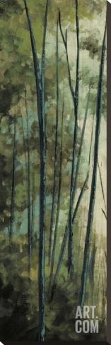 La Senda I Stretched Canvas Print by Luis Solis at Art.com