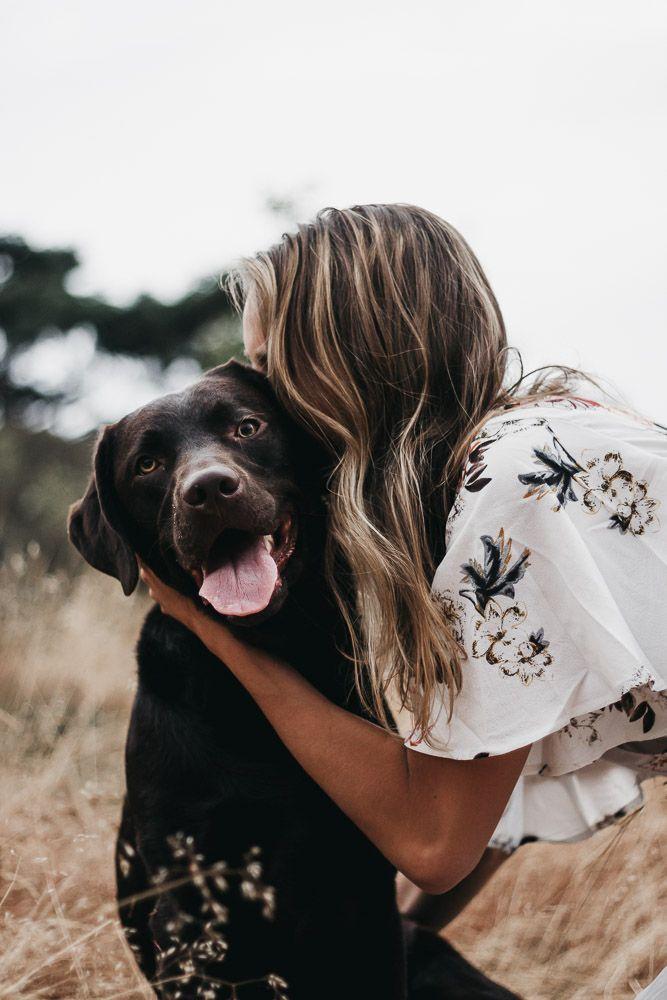 Photo of Fotografía de perros – Perro – #hund #Hundefotografie