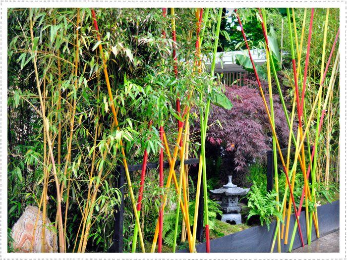 Peindre tuteurs bambousdéco façon mikado Ya ka jardiner