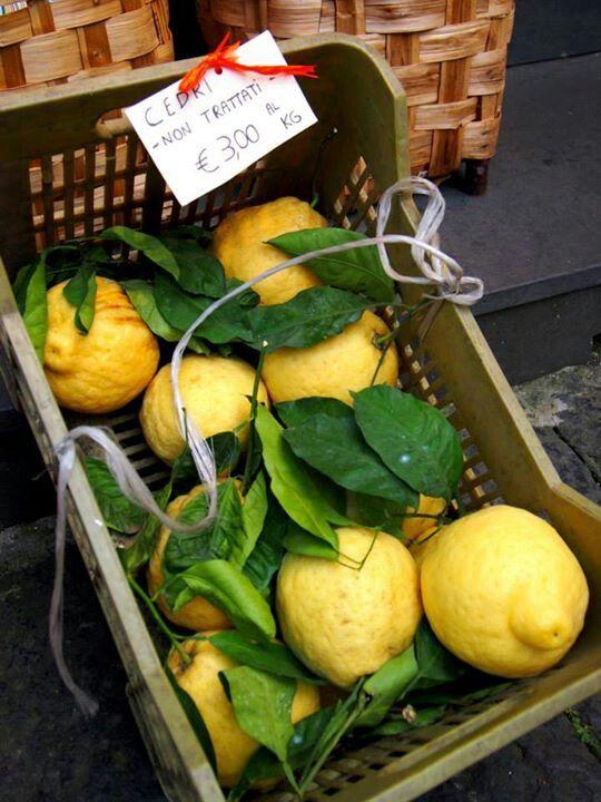 Lemons Sorrento