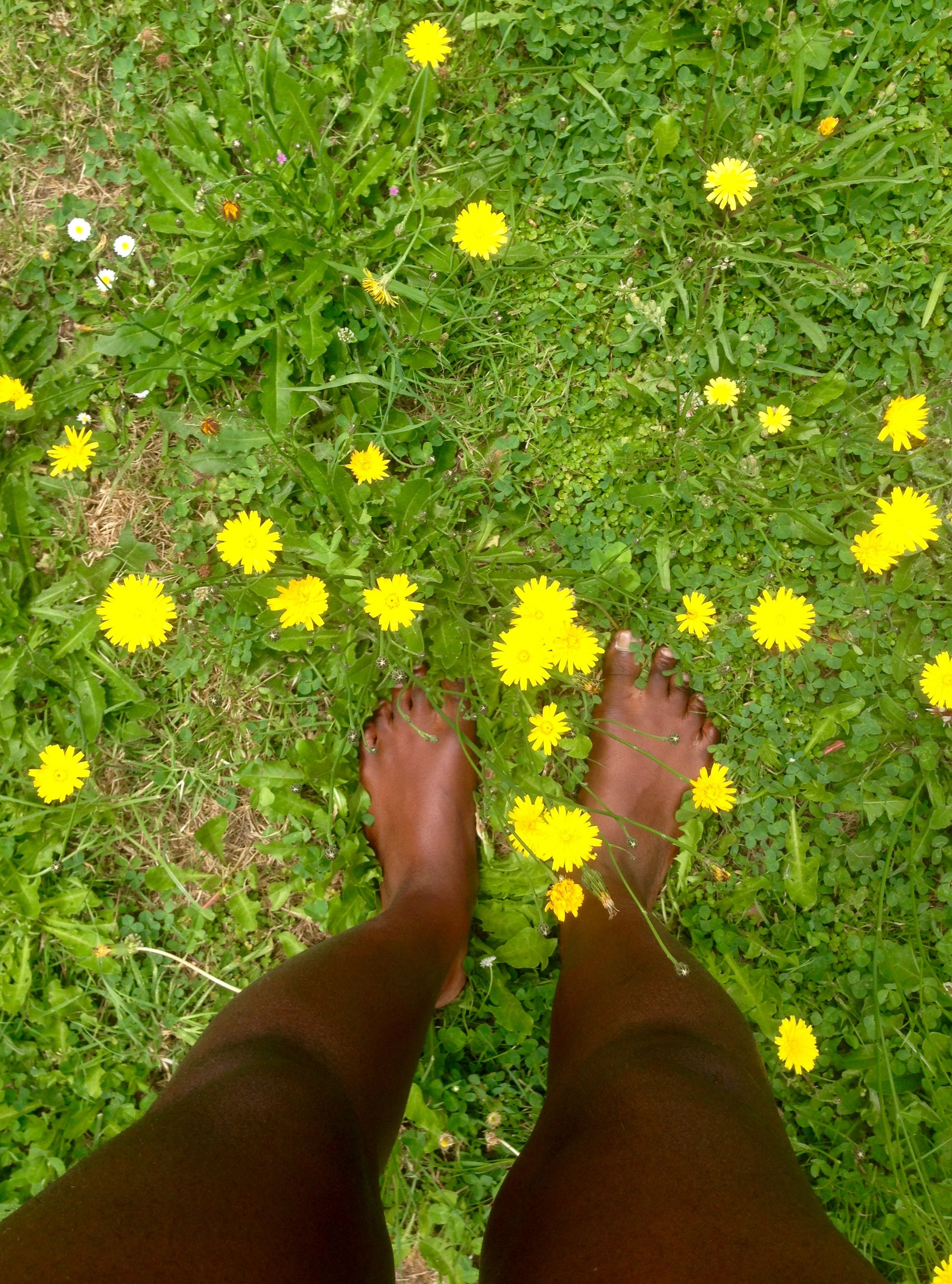 Jordan Has Hallucinations Of Flower Fields Untitled Zombie Story
