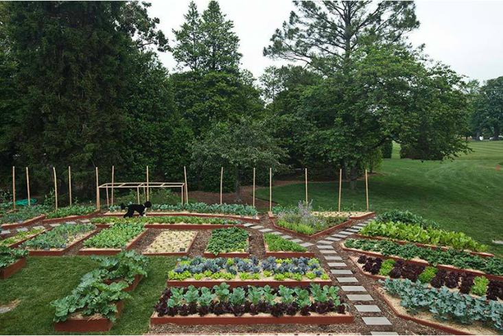 10 Garden Ideas To Steal From Michelle Obama Gardenista Backyard Garden Layout Garden Layout Vegetable Garden Design Layout