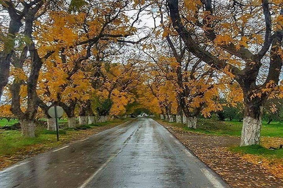 يعد الخريف الفصل المفضل لدى الكثير من الناس حيث يجلب لهم اجواء باردة و منعشة و كذلك للتمتع بمناظر الطبيعة الخلابة و صور سقوط اورا Country Roads Tourism Algeria