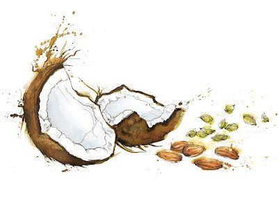 Tesco Organic Watercolor Food Illustration Fruit Illustration