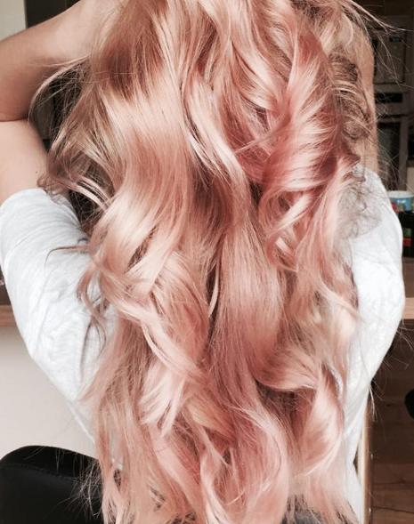 Hannavogel Roseblonde Rose Hair Highlights In 2019