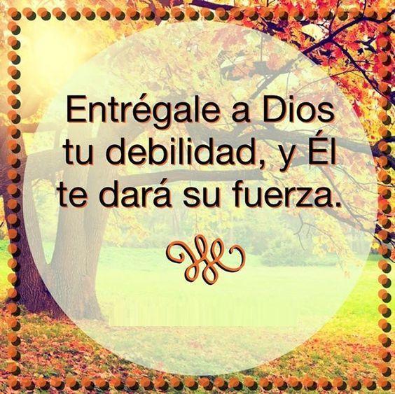 Entregale A Dios Tu Debilidad Y El Te Dara Su Fuerza Frases