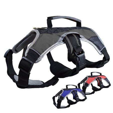 Dog Walking Lifting Carry Harness, Support Mesh Padded Vest ...