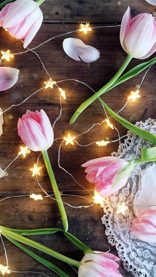 Starry Light Tulips Wallpaper For IPhone And Android