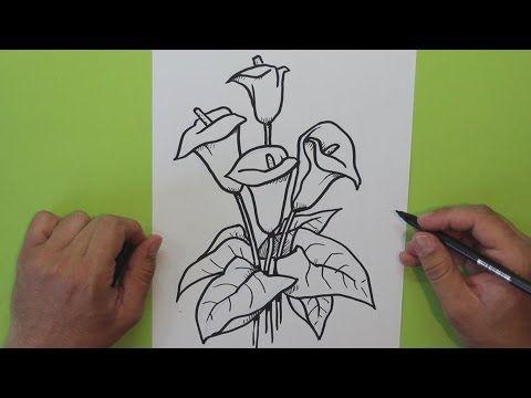 Cmo dibujar una flor Cala Alcatraz Lirio de agua  How to draw