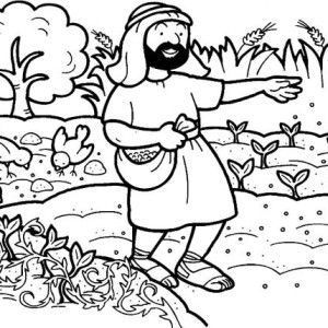 Parable Of The Sower Seed That Falling Into Good Soil In Coloring Page