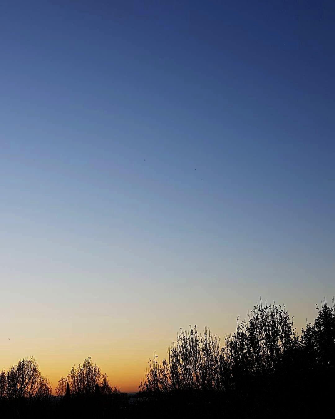 Autumn sunsets.  Figure da 1 a 4 Valiko per METABOX metabox.zone  @valiko_vintage  Winter is comin