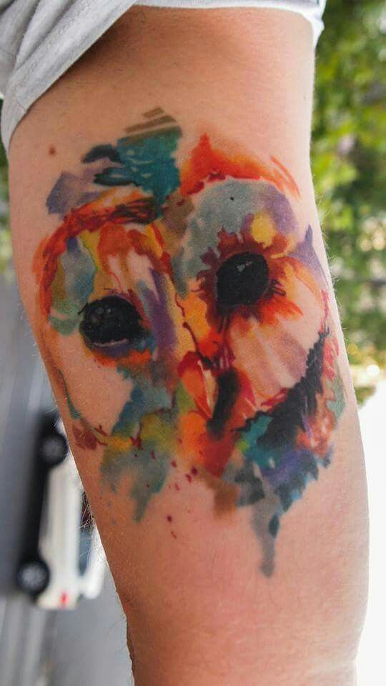 #Watercolor #tattoo #owl