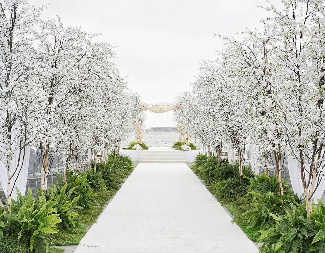Can you imagine walking down this white, lush #cherryblossom tree ...