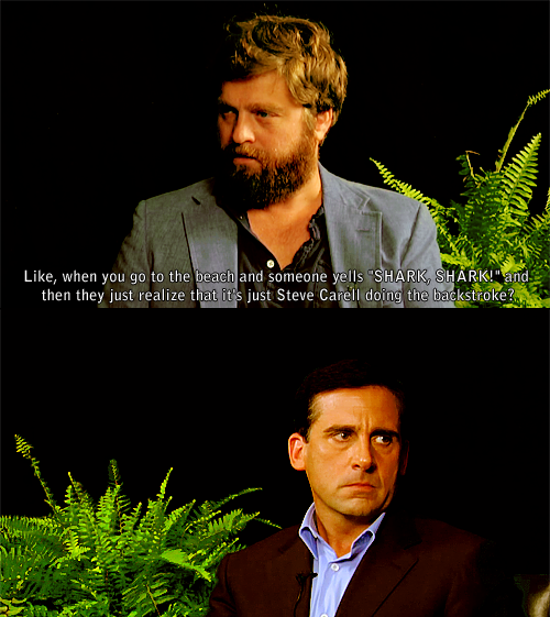The Little Black Submarines / Shark (steve carell,zach galifianakis,funny,funny or die,shark,between two ferns)