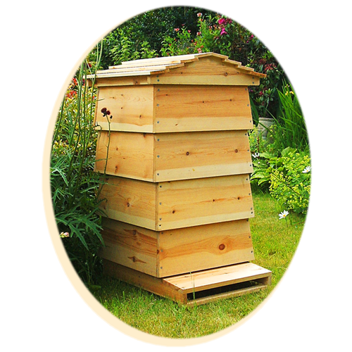roof  on beehive