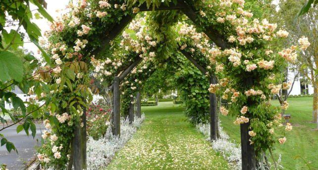 New Zealand Wedding Venues