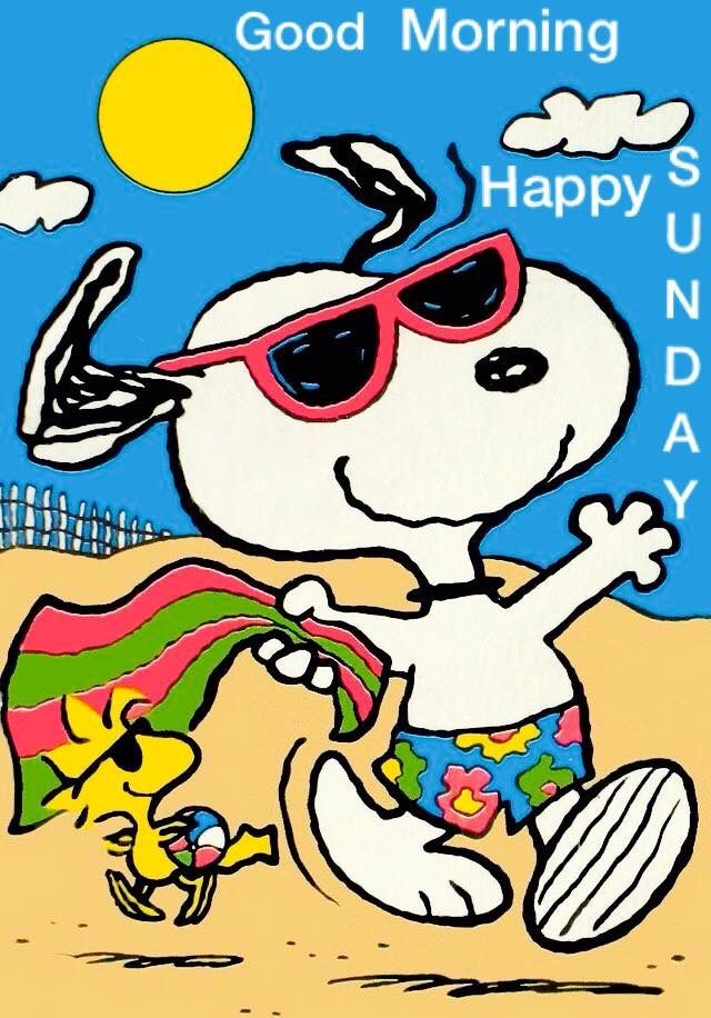 Pin By Nora Julig On Snoopy Fun Times Pinterest