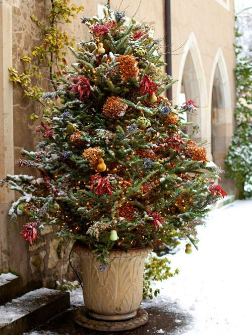 Holiday Tree - why not wire outdoor Christmas trees with pretty
