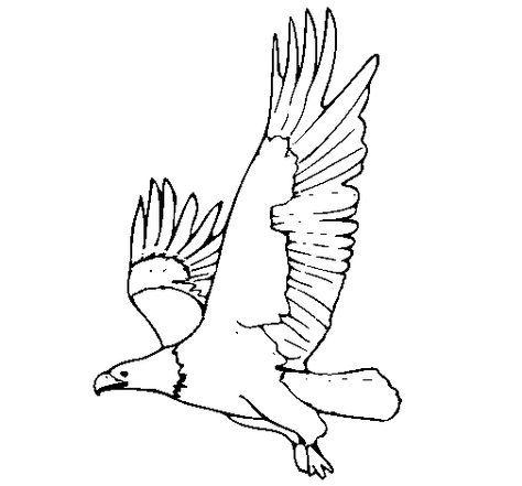 Dibujo de Águila volando para Colorear - Dibujos.net | Manualidades ...
