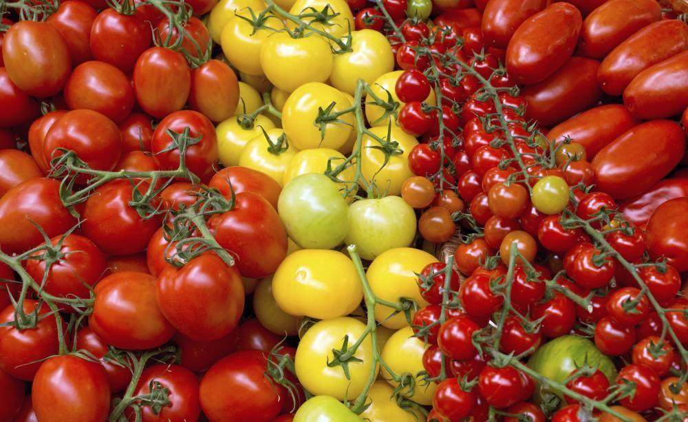 Tipps Für Eine Reiche Tomatenernte | Garten Gemuse Im Spatsommer Sorten Garten Tipps