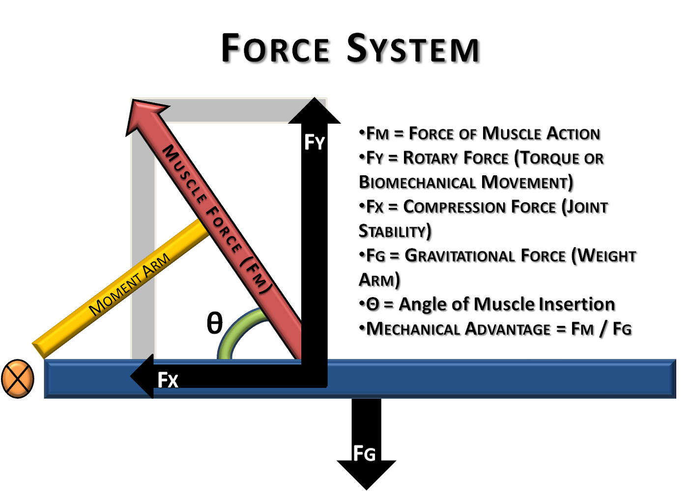 Force Diagrams Example For Science Class In 2020 Science Body Diagram Biomechanics
