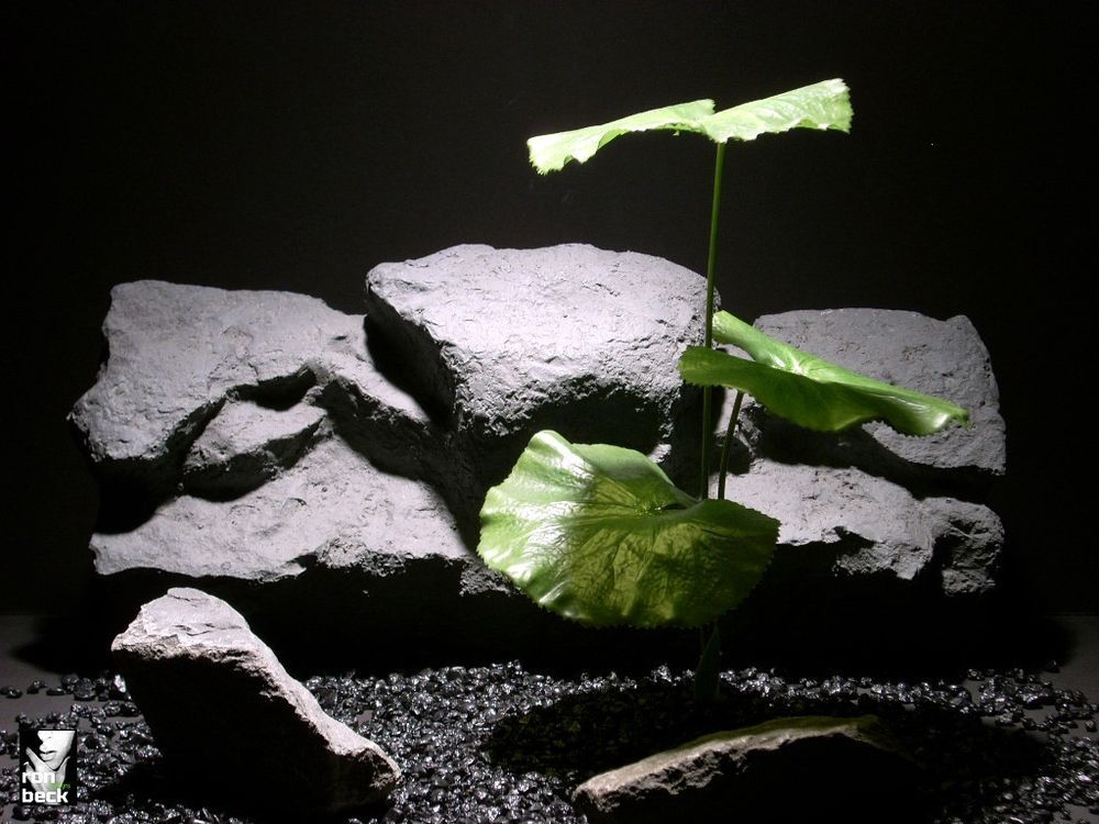 aquarium fish reptile plant | lotus leaves | silk latex  ron beck designs click #ron_beck_designs or visit www.ronbeckdesigns.com