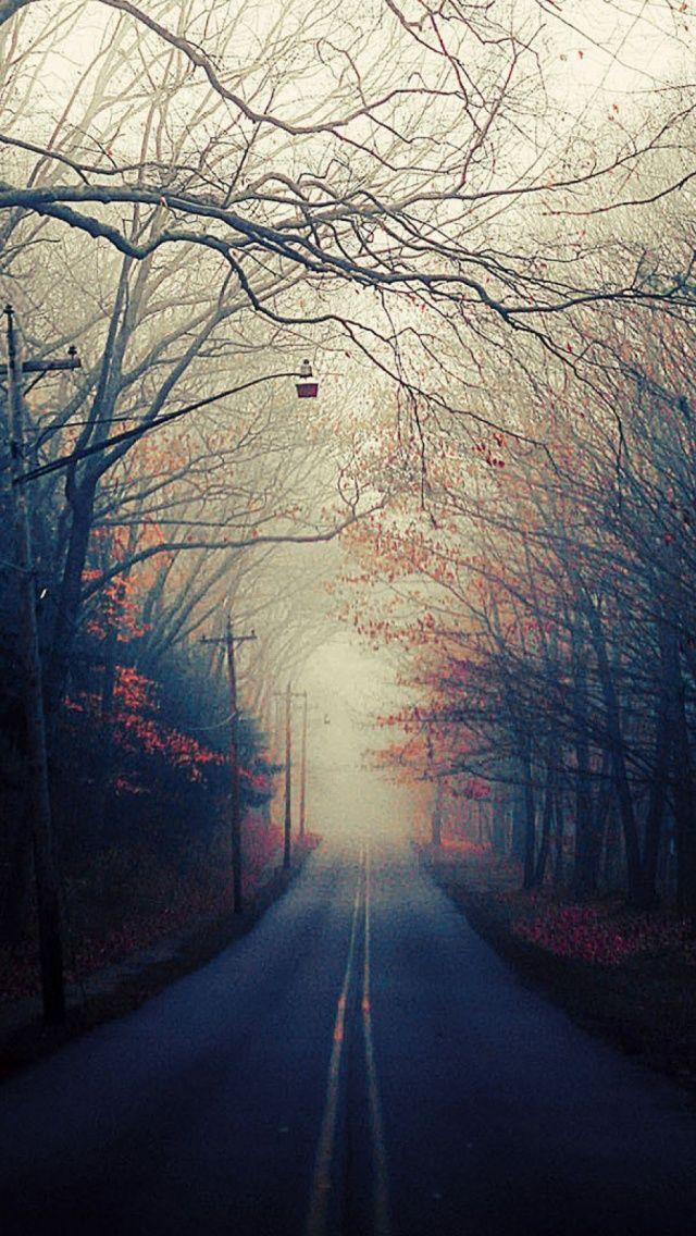 Roads Autumn Mobile Wallpapers Wallpaper Autumn Mobile Wallpaper