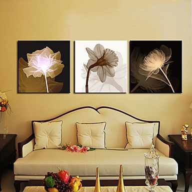 Stretched Canvas Art Botanical Growth Set of 3   Canvases, Prints ...