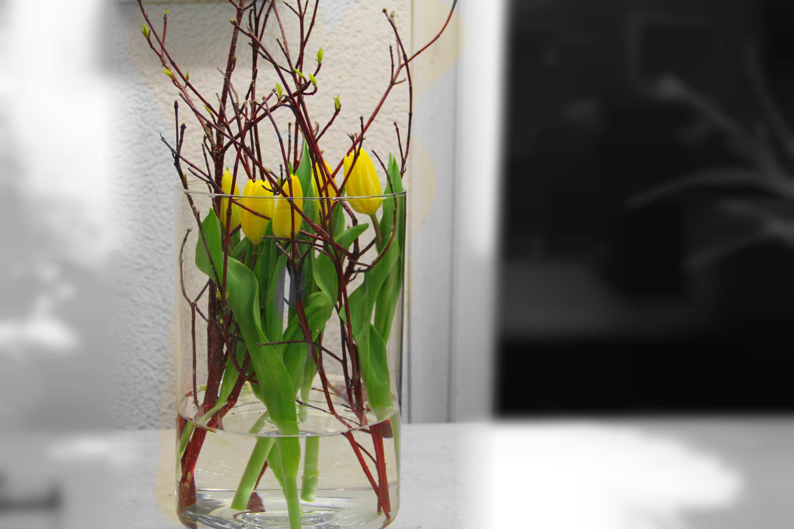 38++ Tulpen in vase dekorieren Sammlung