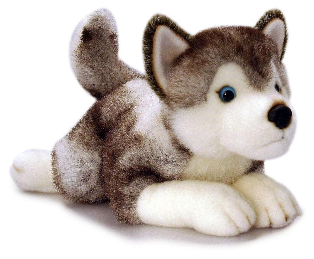 Keel Toys Storm The Husky 50cm Plush Dog Soft Toy Puppy Stuffed