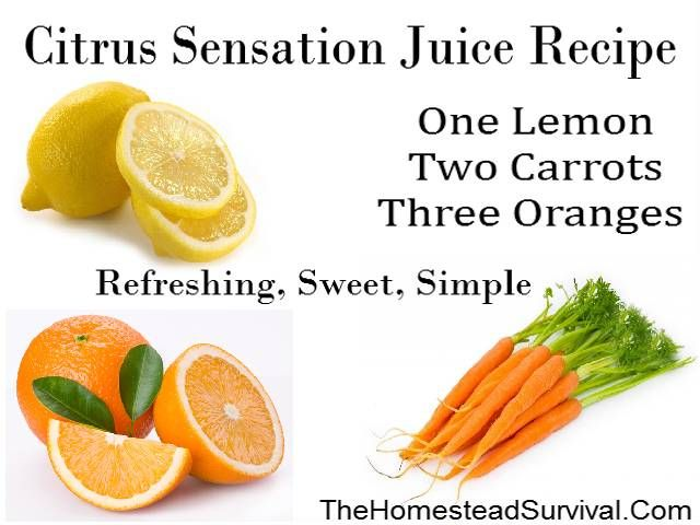Citrus Sensation Juice Recipe » The Homestead Survival