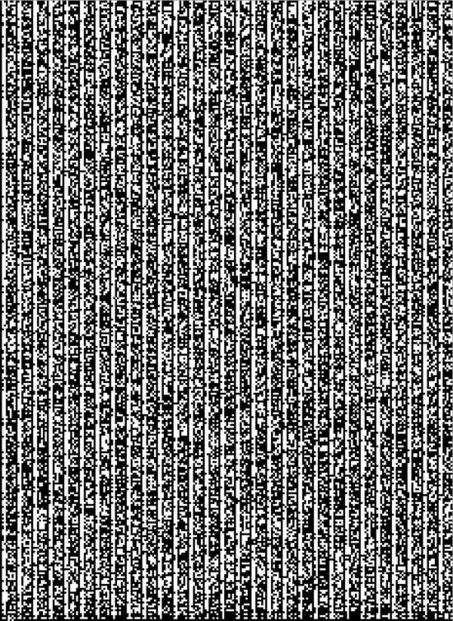 Binary Code Binary Code Code Art Typography