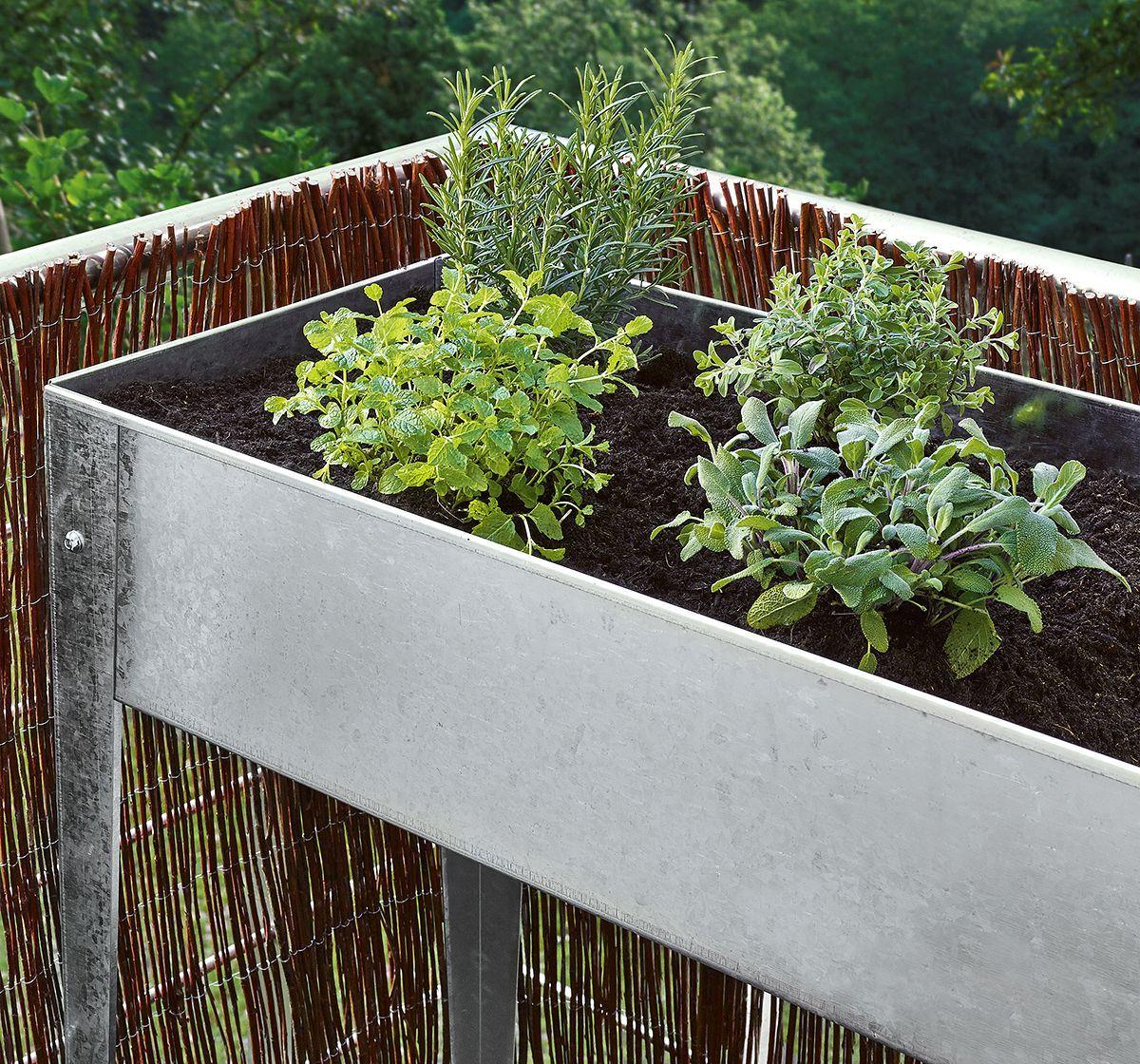 Hochbeete Fur Balkon Terrasse Den Garten Hochbeet Hochbeet Bauen Hochbeet Selber Bauen