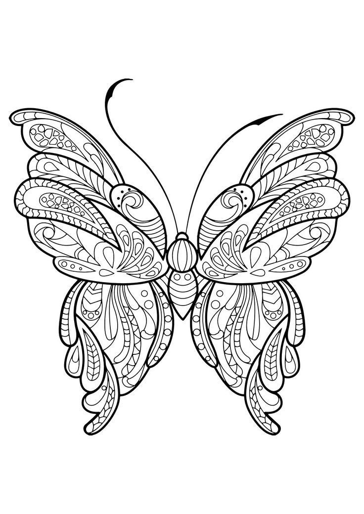 This Adult Coloring Book With Beautiful Butterfly Pictures To Color Is Very Easy