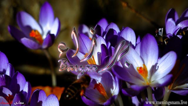 معنى اسم برزاء وصفات حاملة هذا الاسم Barzaa Plants Bangs