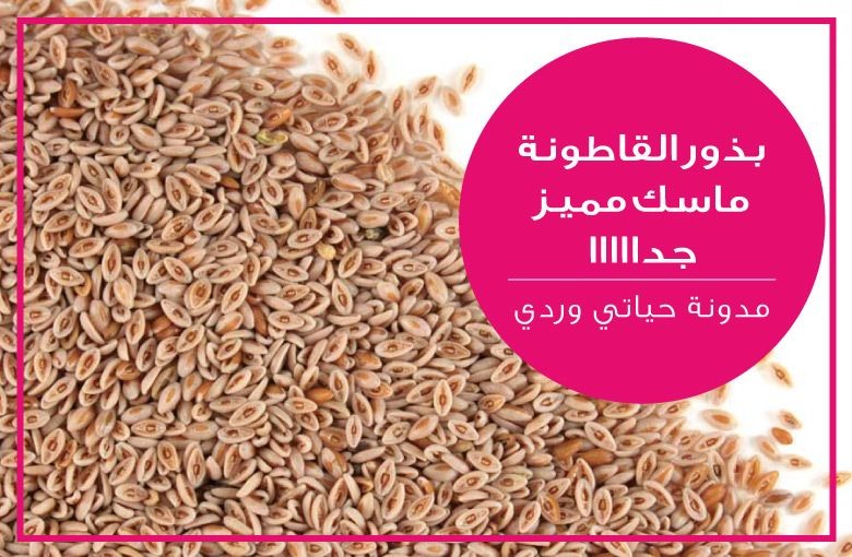 Http Mylife Is Pink Blogspot Com Eg 2015 02 Psyllium Seeds Face Mask Benefits And How To Make It Html How To Dry Basil Food Animals Seeds