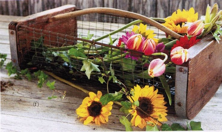 etúHOME Peter Basket perfect for inside and outside use. #etúHOME