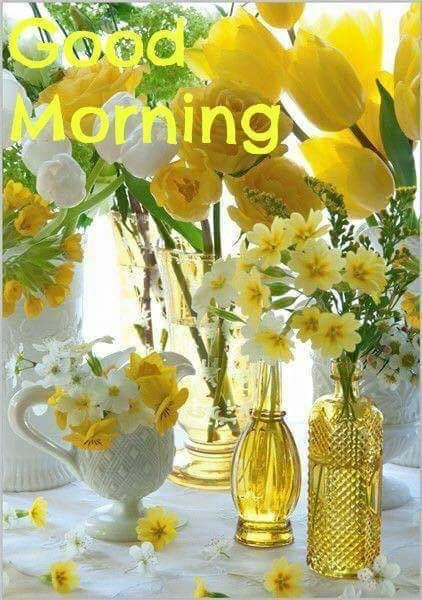 Good morning pinterest morning images blessings and dil se good morning mightylinksfo