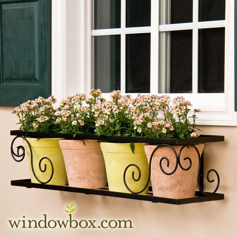 72 Scroll Window Box Cage Square Design Window Box Metal Window Boxes Window Box Flowers