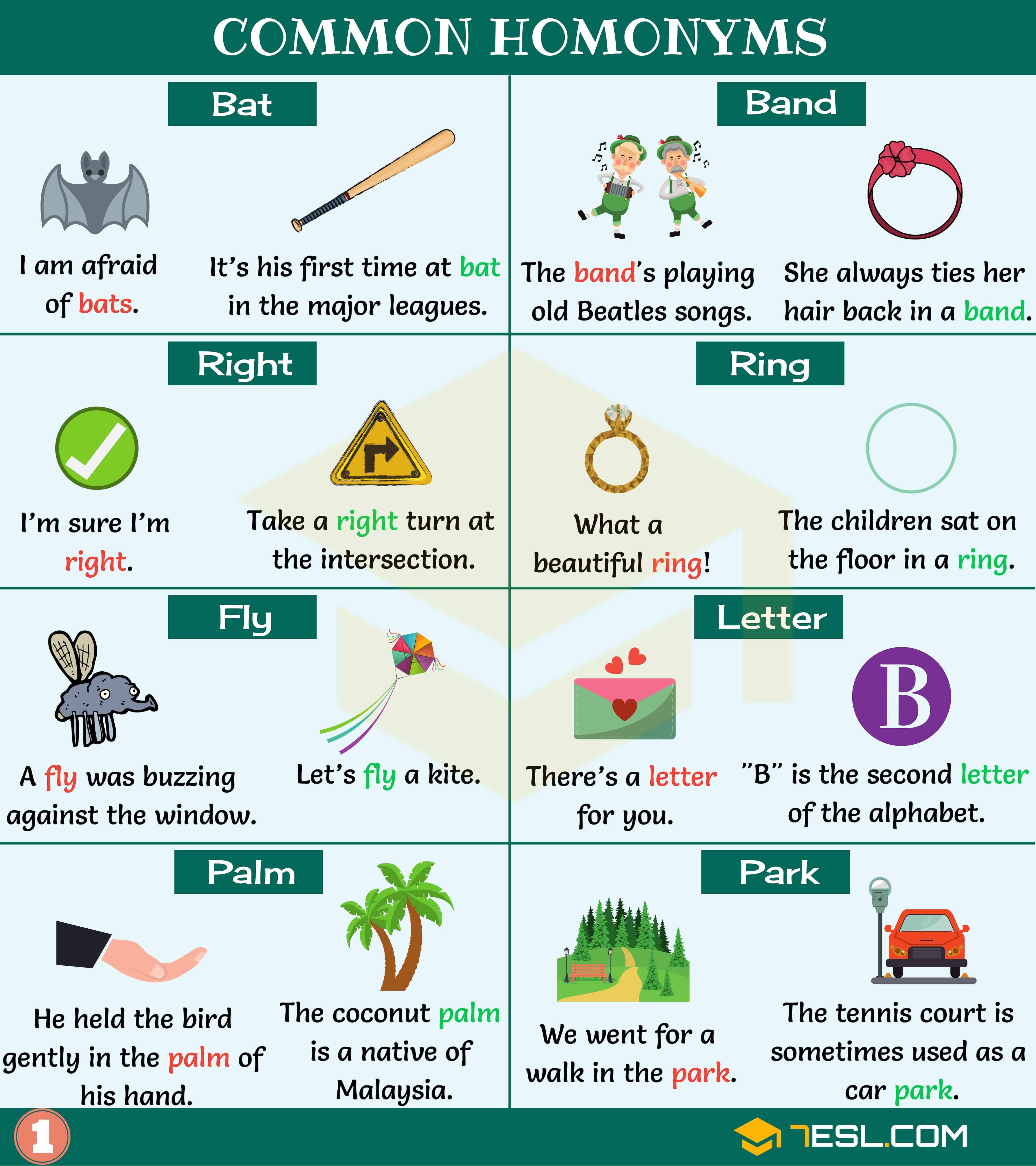 Homonym Extensive List Of 300 Homonyms With Examples 7esl Homonyms Learn English Multiple Meaning Words [ 4500 x 4000 Pixel ]