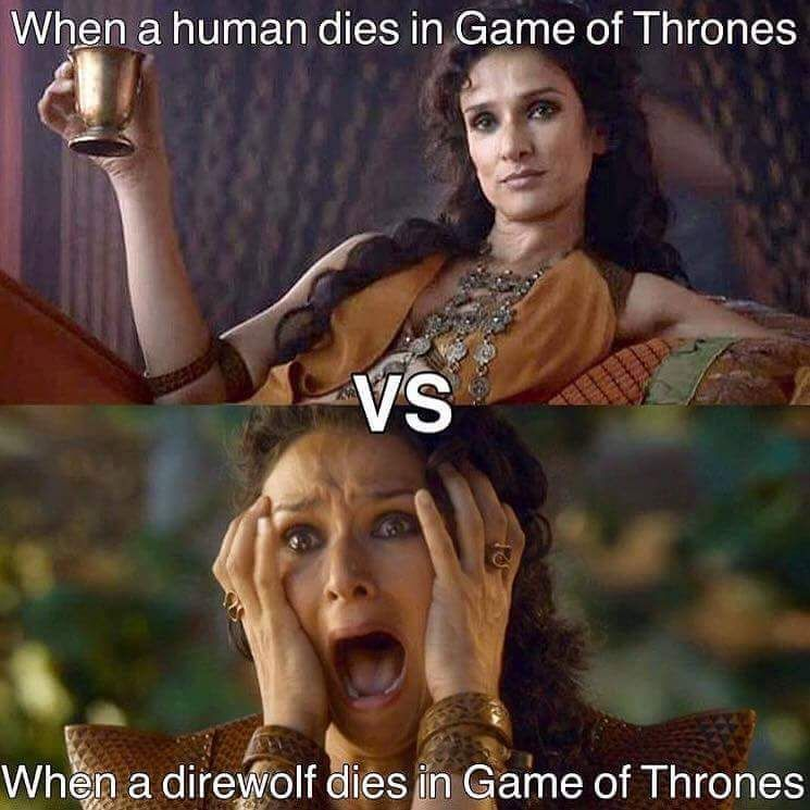 Game of Thrones Meme (@Thrones_Memes) on Twitter #gameofthrones