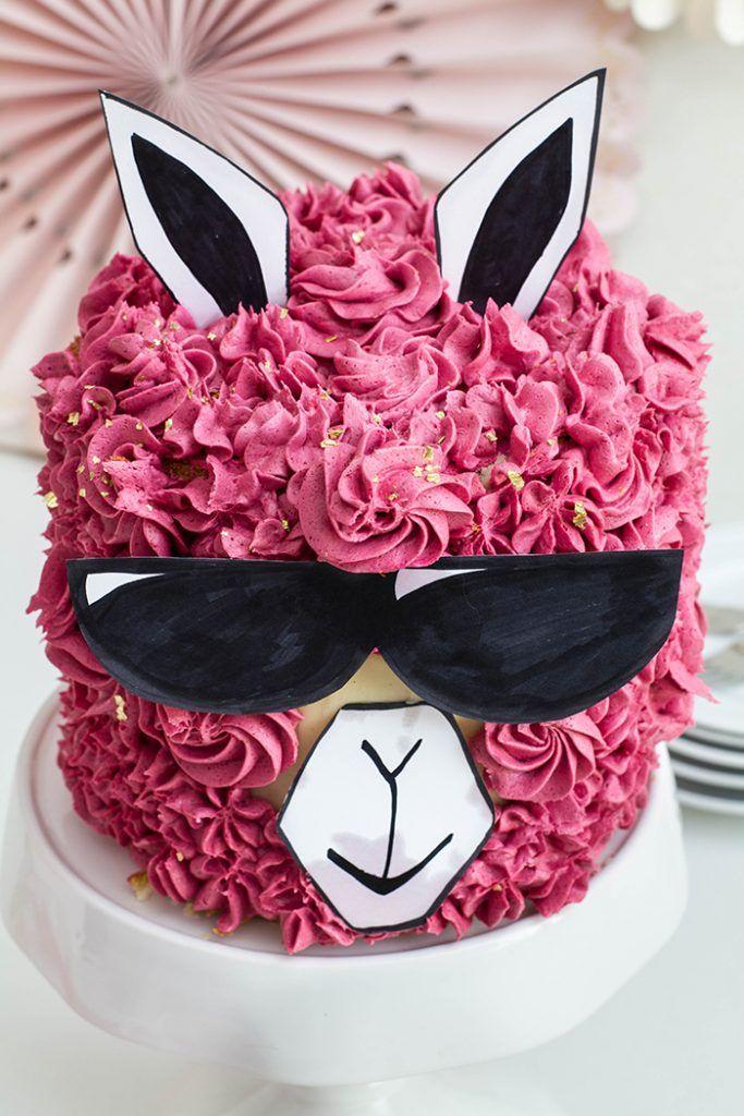 Himbeer Vanille Torte Alias No Drama Lama Cake Torten