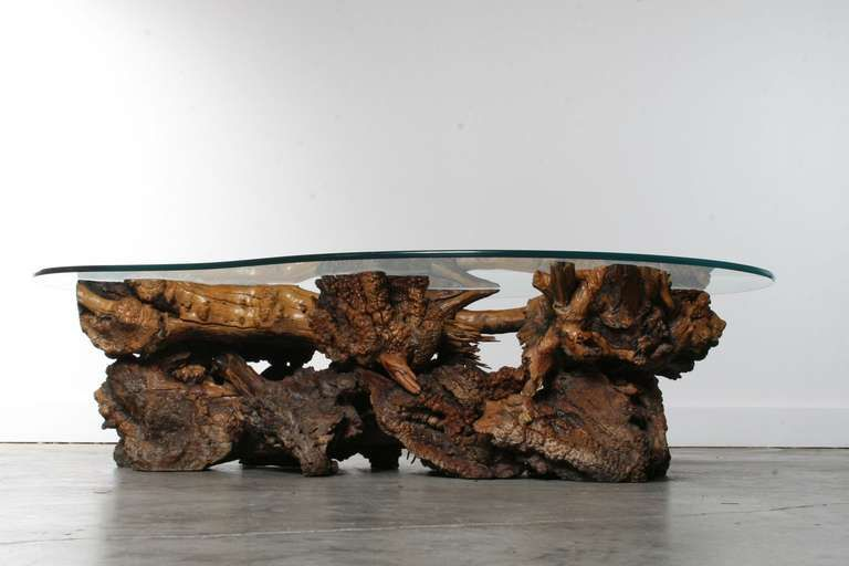 California Burl Wood Coffee Table with Amoeba Glass Top - California Burl Wood Coffee Table With Amoeba Glass Top From A