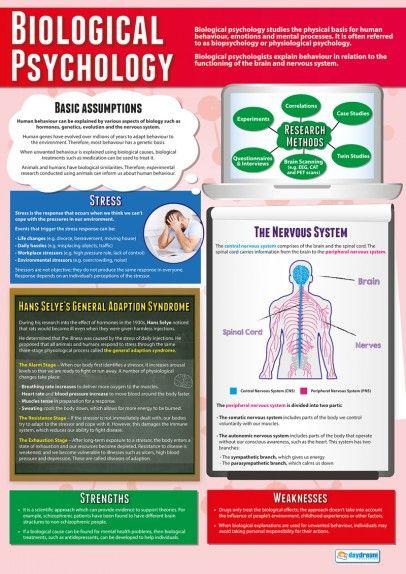 Biological Psychology Poster | Psychology Posters | Pinterest ...