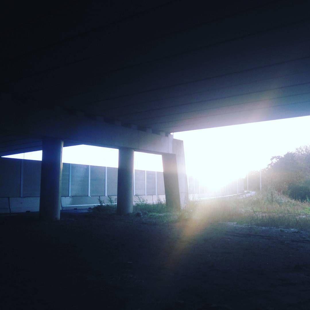Dag 317; Here comes the sun