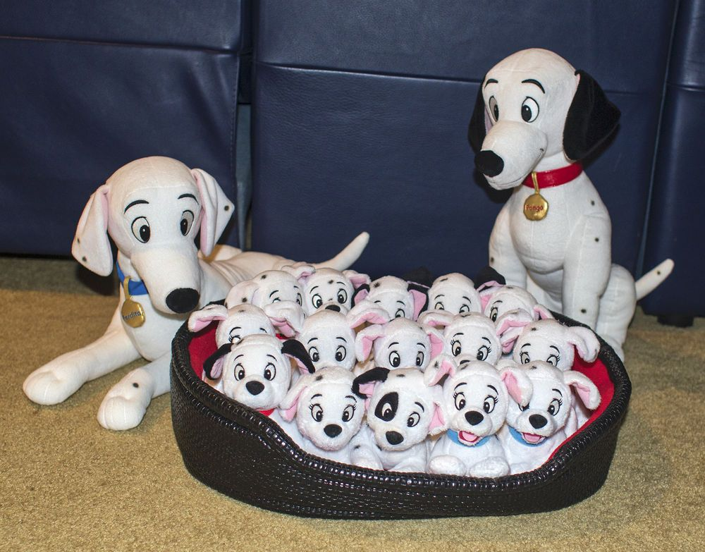 Jewel With Tags Sufficient Supply Disney Bean Bag Plush 101 Dalmations