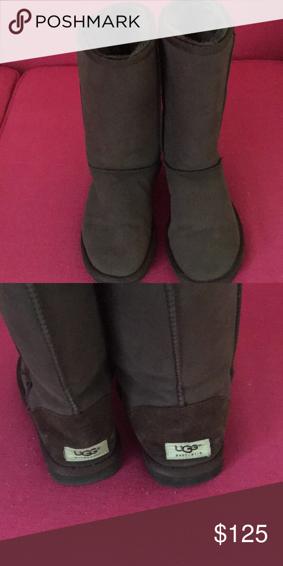 e8d23315e0e7 AUTHENTIC UGG TALL BROWN BOOTS Gently worn. Classic tall size 8 UGG Shoes  Winter   Rain Boots