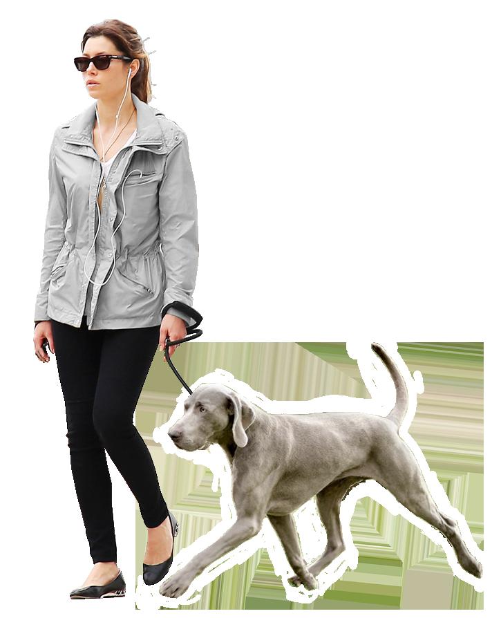 Woman Dog Gray Render People People Walking Png People Png